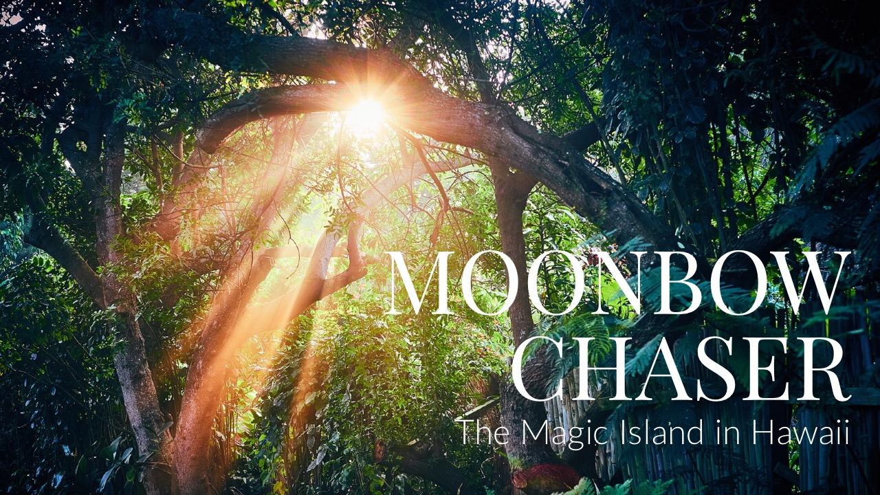 7/27(金)〜8/2(木) 写真展「The Magic Island in Hawaii」開催@オリンパスプラザ大阪